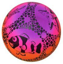 Gumilabda, tengeri állatos, szivárványos - 22 cm - 70999